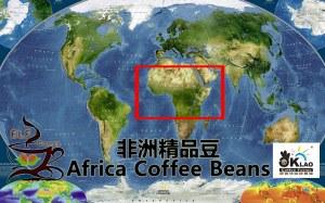 非洲精品豆 Africa Coffee Beans