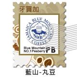 CB-20105 R.S.W 頂級藍山 丸豆