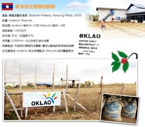OKLAO Coffee Farm-2